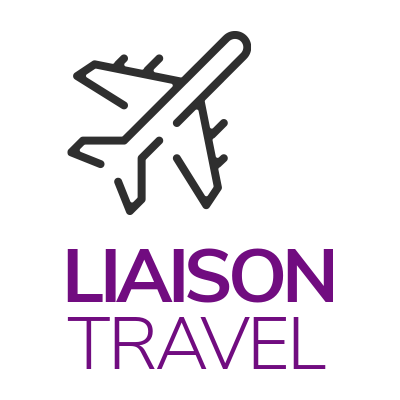 Liaison Travel plan icon